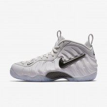 Nike Air Foamposite Pro QS Lifestyle Shoes Mens Vast Grey/Black AO0817-001