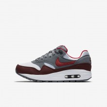 Nike Air Max 1 Lifestyle Shoes For Boys White/Cool Grey/Team Red/University Red 807602-109