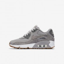 Chaussure Casual Nike Air Max 90 SE Leather Fille Grise/Blanche/Marron Clair 897987-004