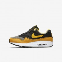Nike Air Max 1 Lifestyle Shoes For Boys Dark Stucco/Black/Mineral Yellow/Vivid Sulfur 807602-007